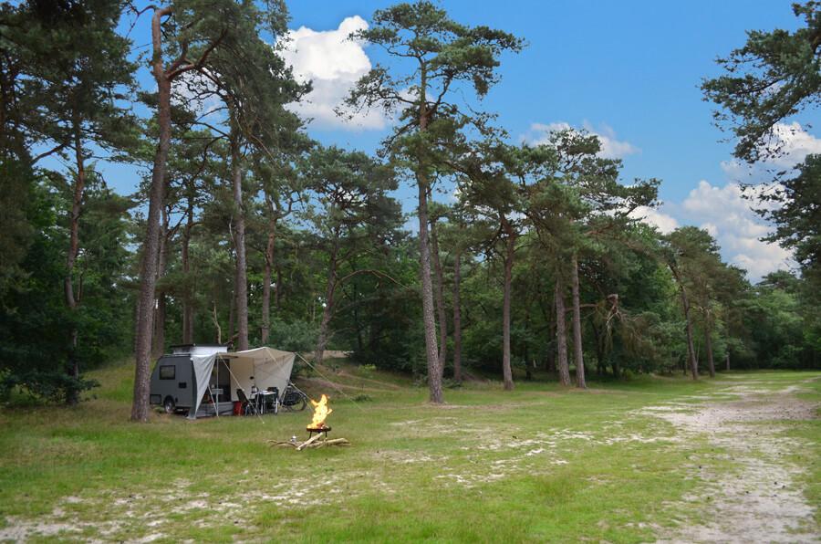 Kip Shelter met varioluifel in het bos